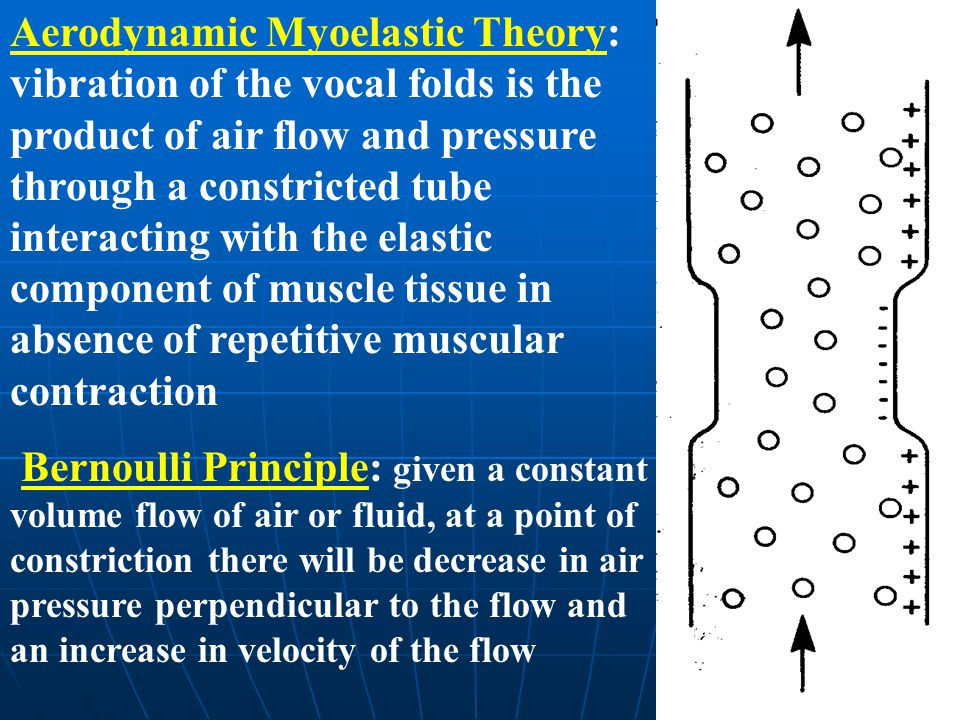Aerodynamic Myoelastic Theory: vibration of the vocal folds is the product of air flow and pressure through a constricted tube interacting with the el