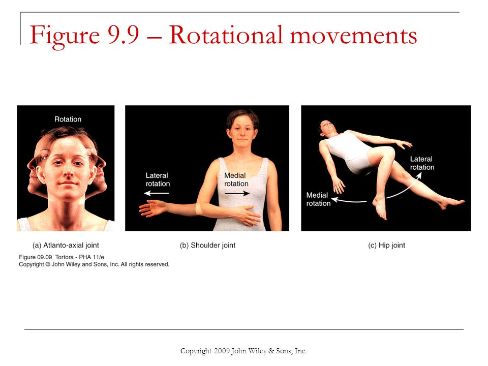Copyright 2009 John Wiley & Sons, Inc. Figure 9.9 – Rotational movements