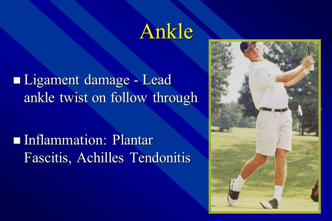 Anatomy of Golf – Lower Leg  Tibia, Fibula, Talus, Calcaneus, etc.