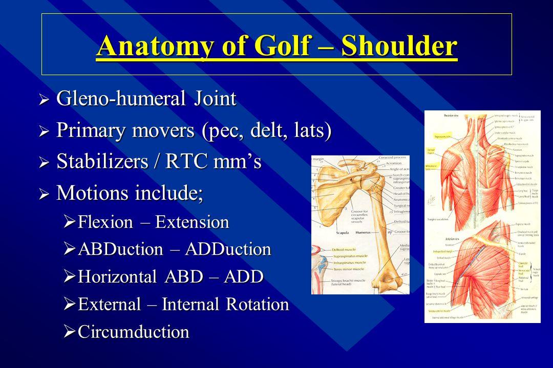 Causes of Injuries n Limited Flexibility n Decreased Strength n Poor Posture n Balance n Inappropriate Warm-up n Inconsistent Swing n Swings Too Hard!!