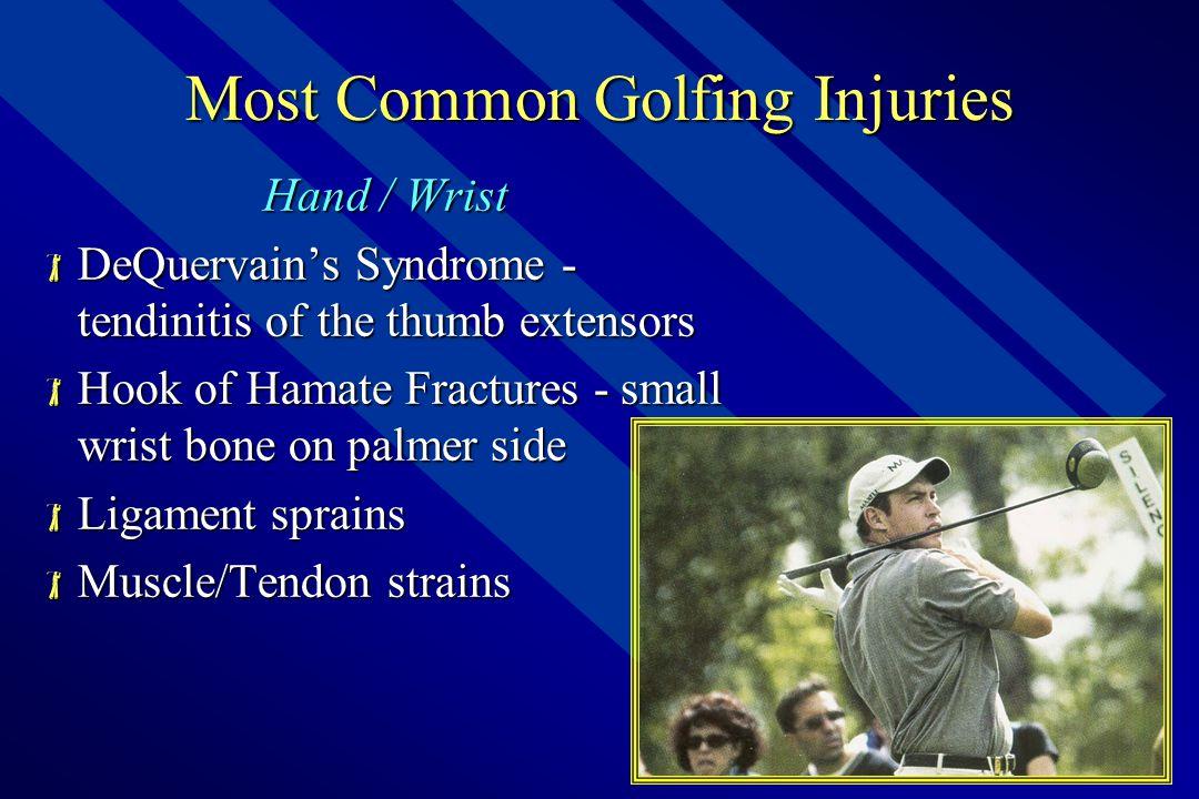 Anatomy of Golf – Forearm  Ulna & Radius  Flexor mm group  Extensor mm group  Deviators  Motions include;  Wrist-Finger Flexion – Extension  Forearm Pronation – Supination  Radial – Ulnar Deviation