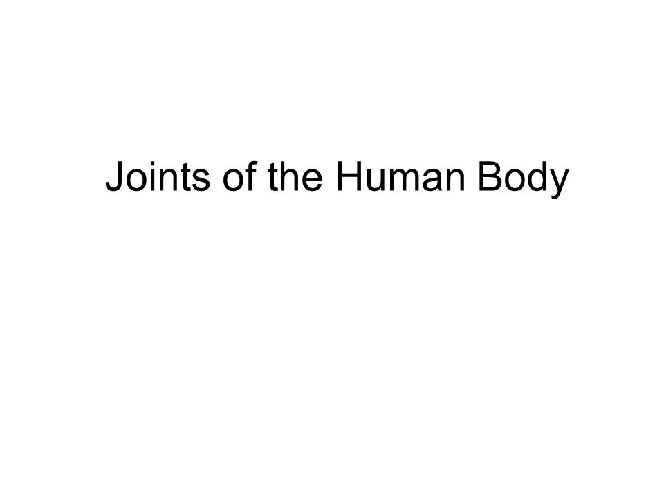 Joint is a point of connection between two bones Strands of connective tissue, ligaments, hold the bones together and ensure the stability of joints