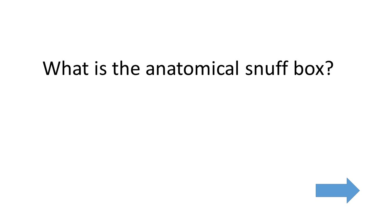 What is the anatomical snuff box