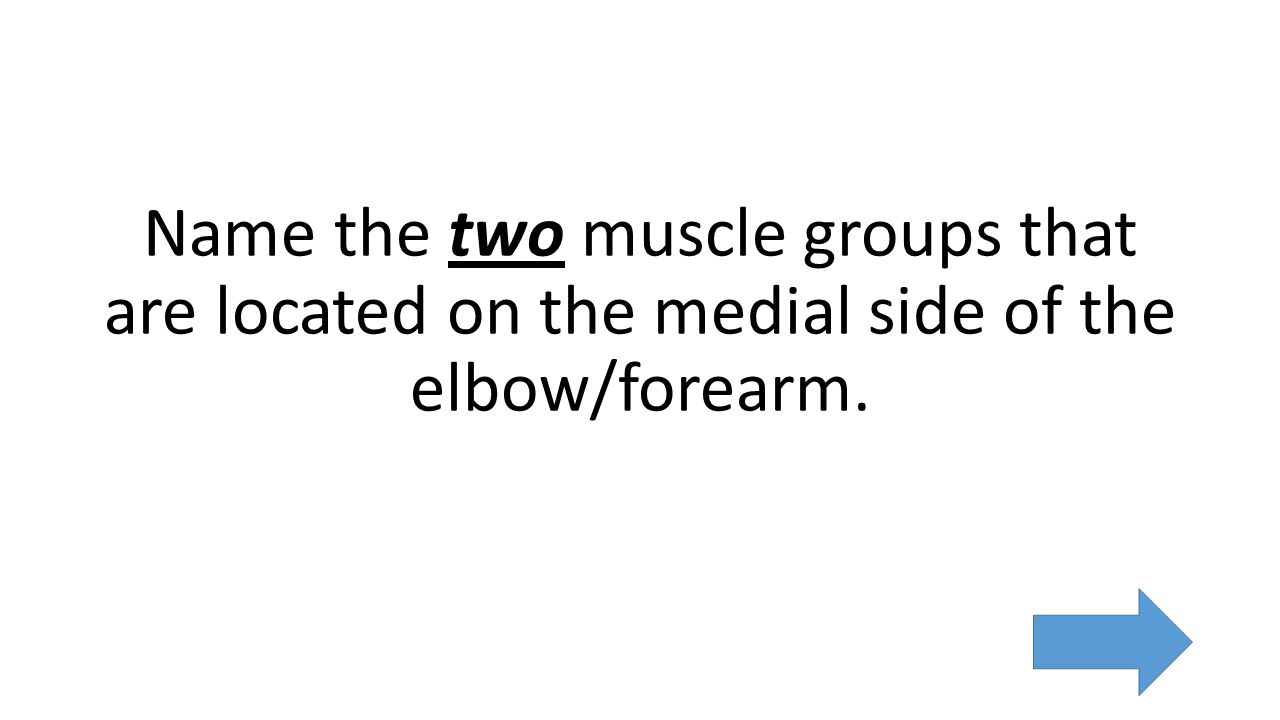 Name the two muscle groups that are located on the medial side of the elbow/forearm.