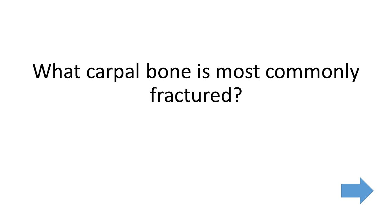 What carpal bone is most commonly fractured