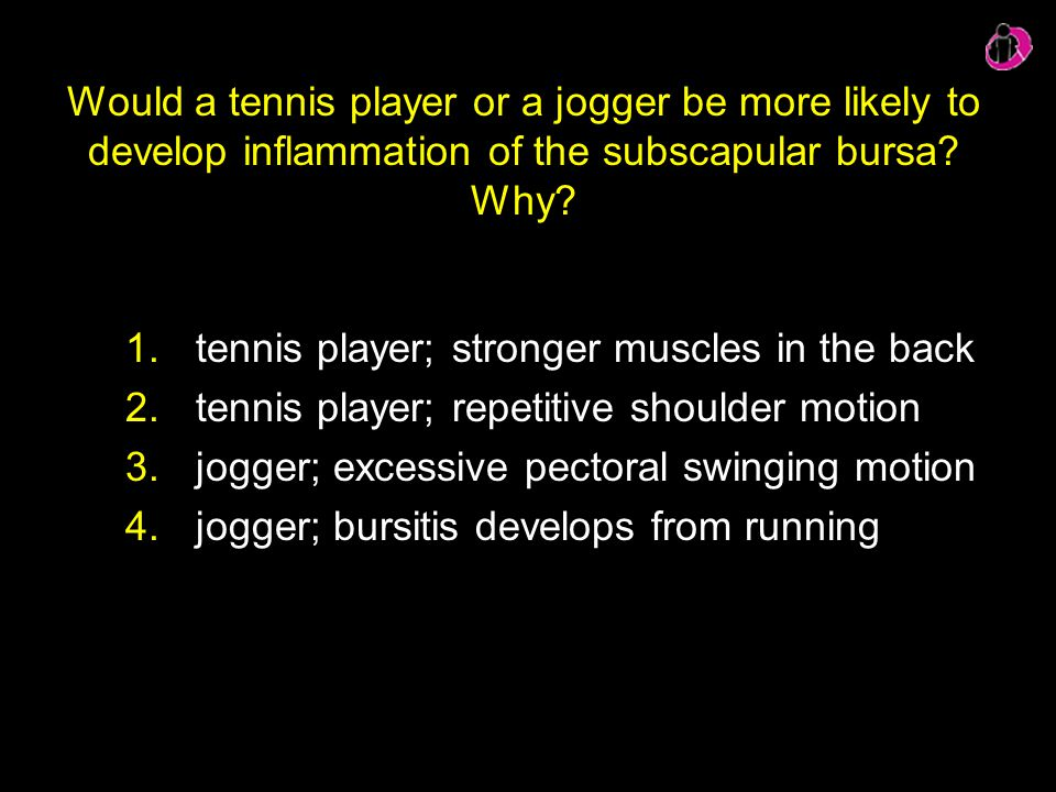 Would a tennis player or a jogger be more likely to develop inflammation of the subscapular bursa? Why? 1.tennis player; stronger muscles in the back