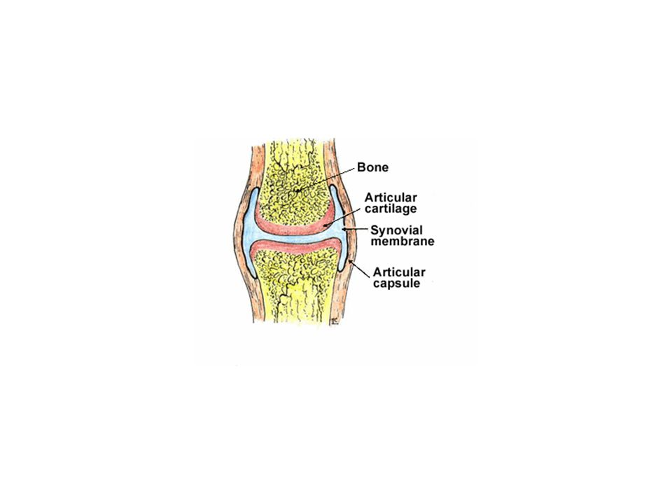 Clinical –Pain C sharp, localized –Soft-tissue swelling –Joint swelling –Flexion deformities –If in extremities, motion affected Treatment –Suture tendon/ligament –Tendon/ligament grafting