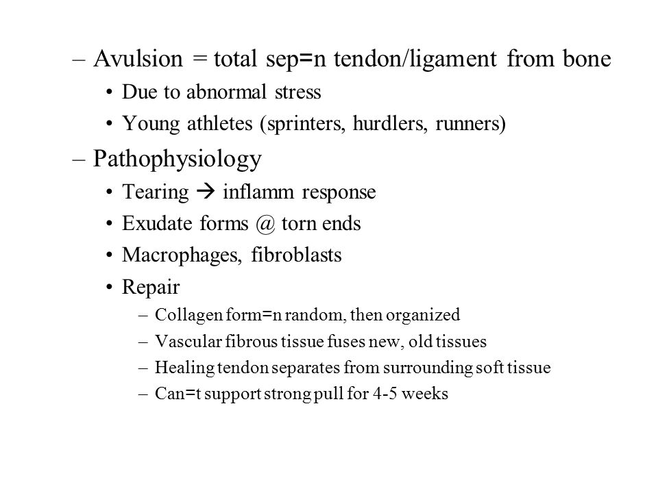 –Avulsion = total sep = n tendon/ligament from bone Due to abnormal stress Young athletes (sprinters, hurdlers, runners) –Pathophysiology Tearing  inflamm response Exudate forms @ torn ends Macrophages, fibroblasts Repair –Collagen form = n random, then organized –Vascular fibrous tissue fuses new, old tissues –Healing tendon separates from surrounding soft tissue –Can = t support strong pull for 4-5 weeks