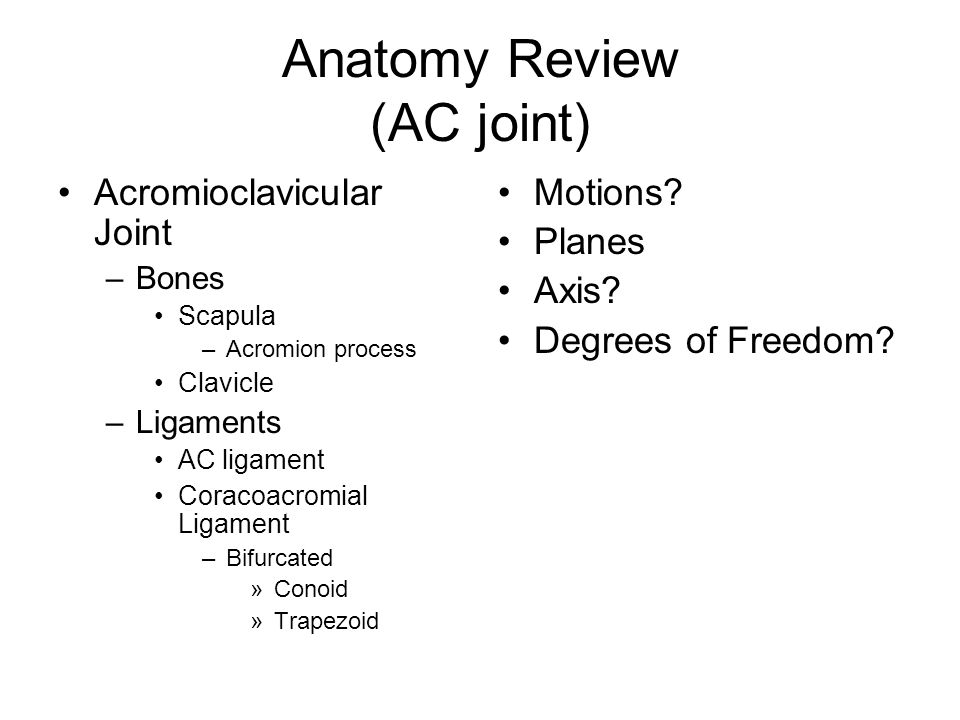 Anatomy Review (AC joint) Acromioclavicular Joint –Bones Scapula –Acromion process Clavicle –Ligaments AC ligament Coracoacromial Ligament –Bifurcated »Conoid »Trapezoid Motions.