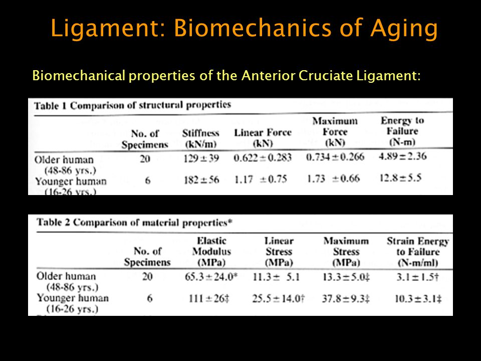 Ligament: Biomechanics of Aging Biomechanical properties of the Anterior Cruciate Ligament: