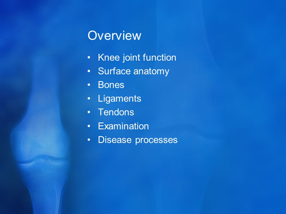 Overview Knee joint function Surface anatomy Bones Ligaments Tendons Examination Disease processes