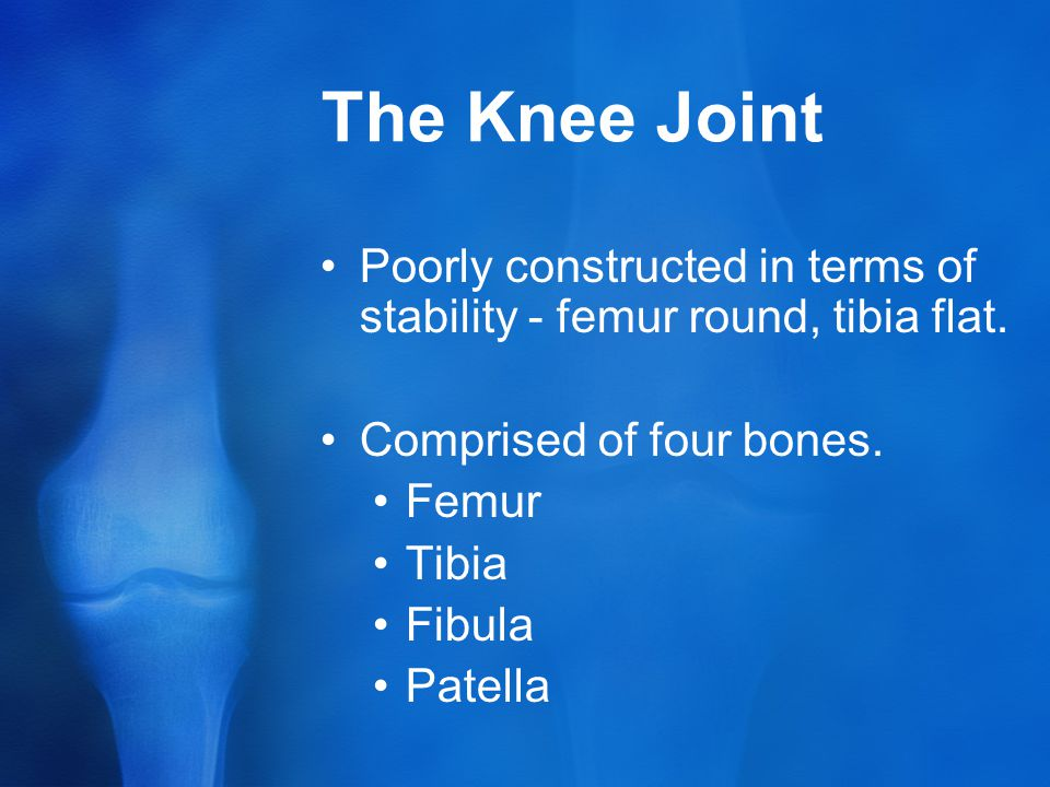 The Knee Joint Poorly constructed in terms of stability - femur round, tibia flat.