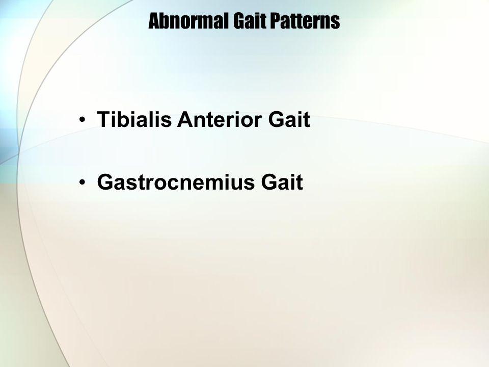 Abnormal Gait Patterns Tibialis Anterior Gait Gastrocnemius Gait