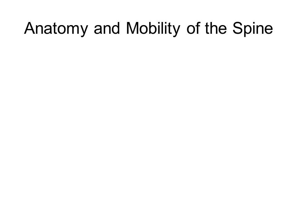 Anatomy and Mobility of the Spine
