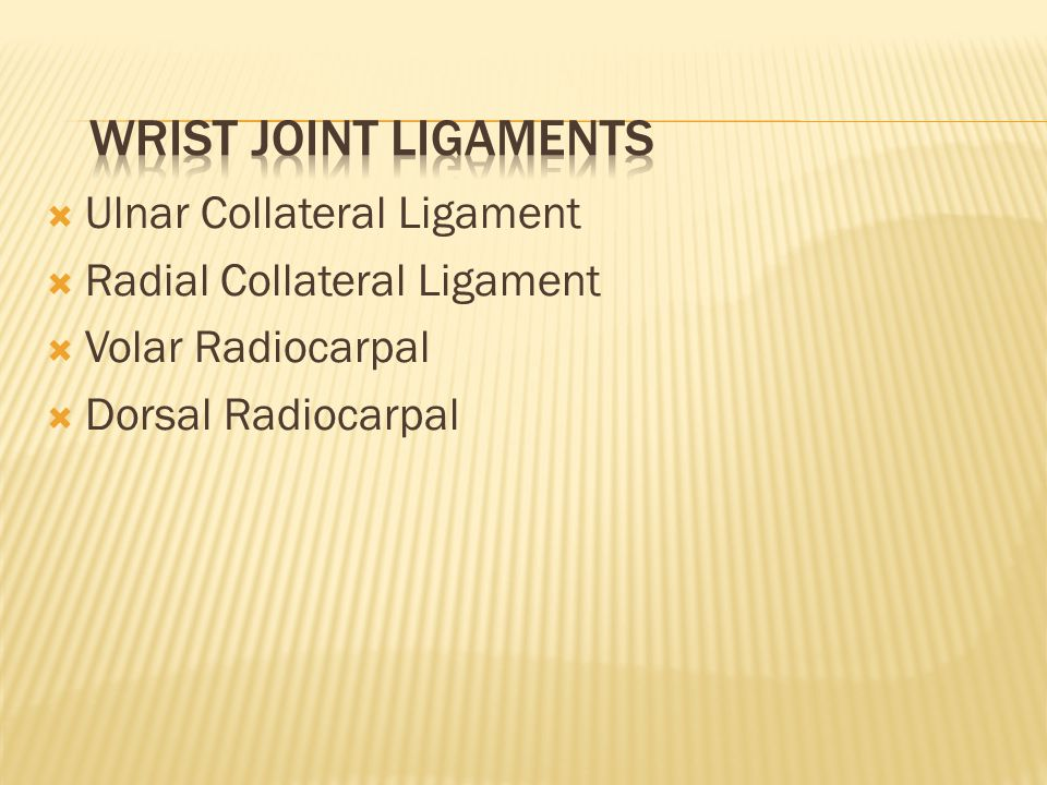  Ulnar Collateral Ligament  Radial Collateral Ligament  Volar Radiocarpal  Dorsal Radiocarpal