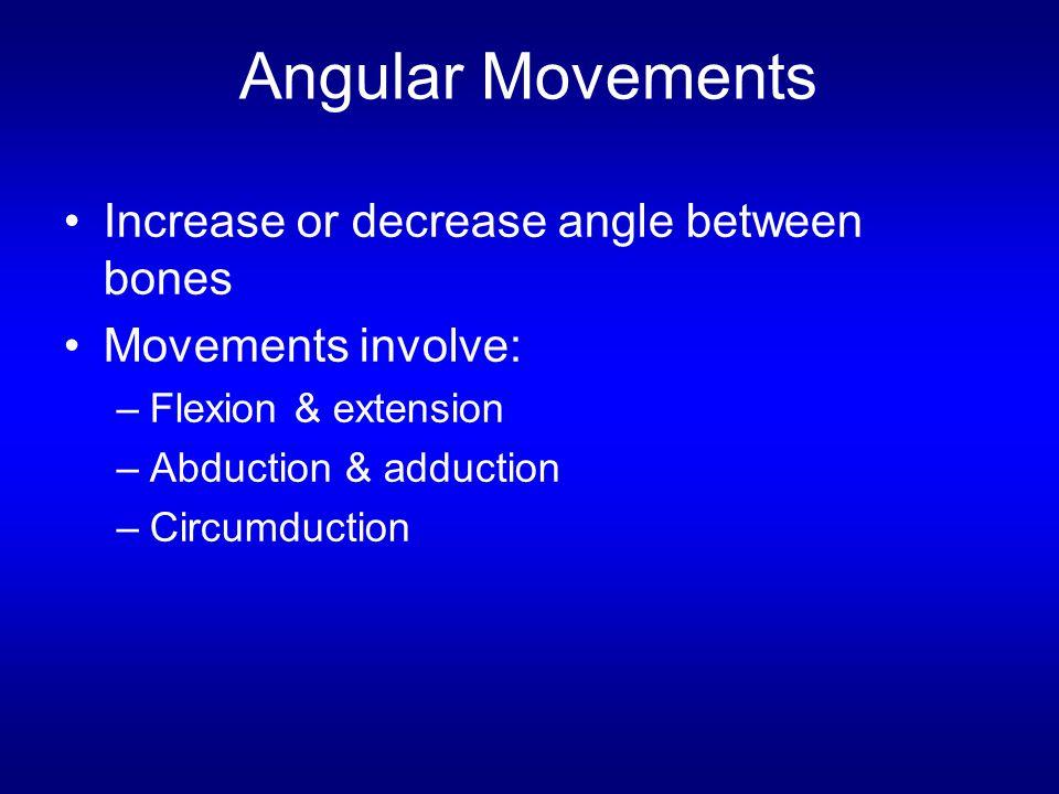 Angular Movements Increase or decrease angle between bones Movements involve: –Flexion & extension –Abduction & adduction –Circumduction