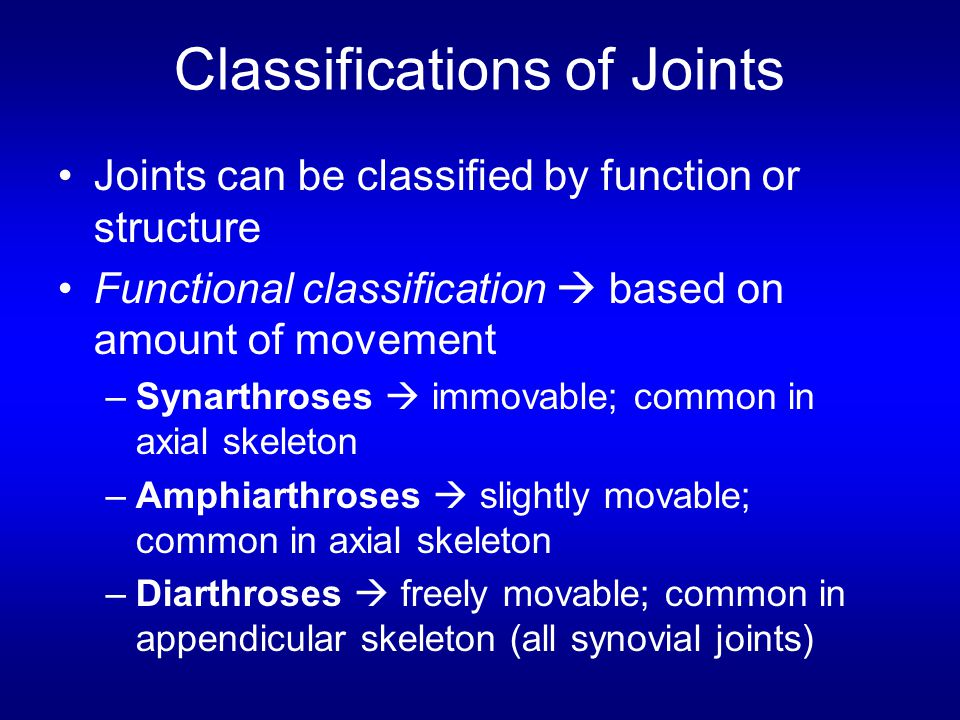 Classifications of Joints Joints can be classified by function or structure Functional classification  based on amount of movement –Synarthroses  immovable; common in axial skeleton –Amphiarthroses  slightly movable; common in axial skeleton –Diarthroses  freely movable; common in appendicular skeleton (all synovial joints)