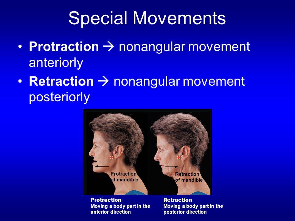 Special Movements Protraction  nonangular movement anteriorly Retraction  nonangular movement posteriorly Protraction of mandible Retraction of mand