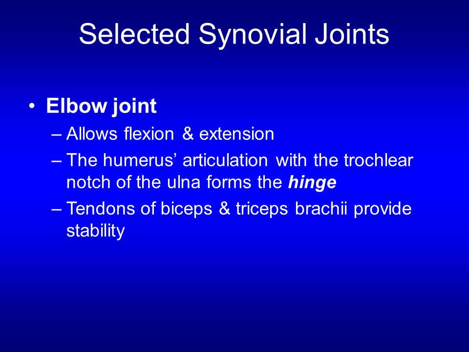 Selected Synovial Joints Elbow joint –Allows flexion & extension –The humerus' articulation with the trochlear notch of the ulna forms the hinge –Tend