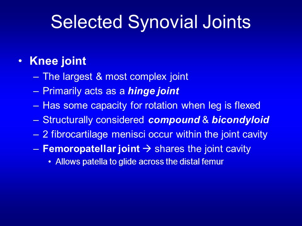 Selected Synovial Joints Knee joint –The largest & most complex joint –Primarily acts as a hinge joint –Has some capacity for rotation when leg is fle