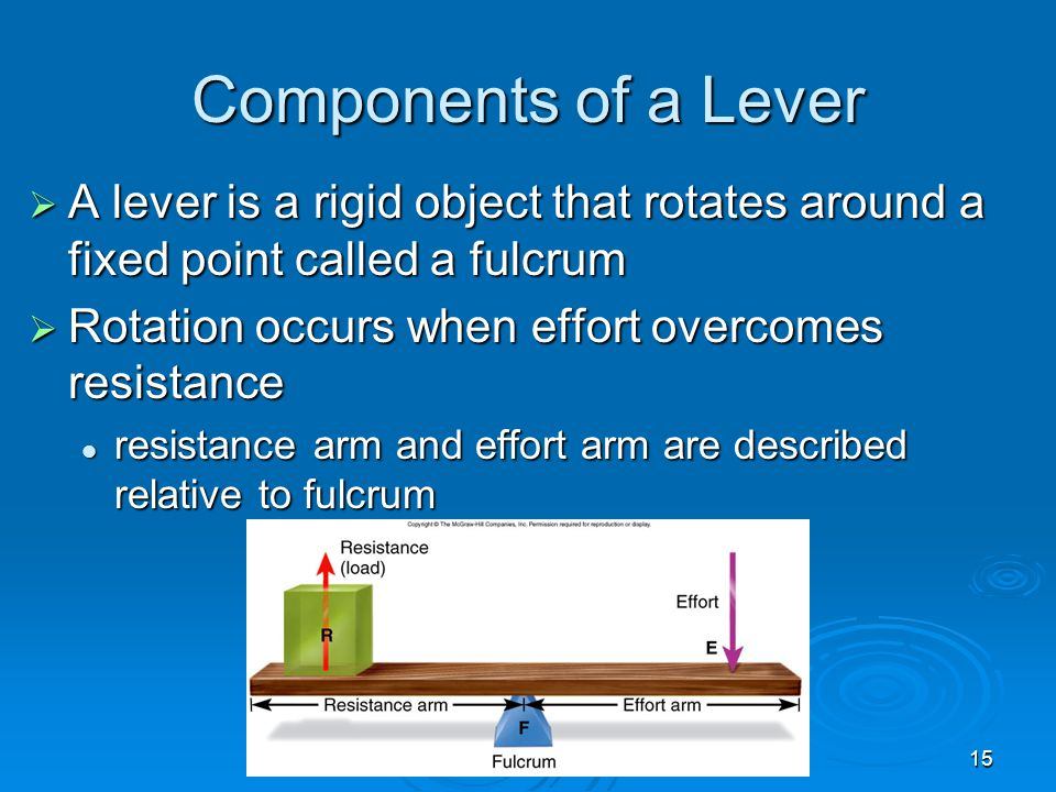 15 Components of a Lever  A lever is a rigid object that rotates around a fixed point called a fulcrum  Rotation occurs when effort overcomes resist
