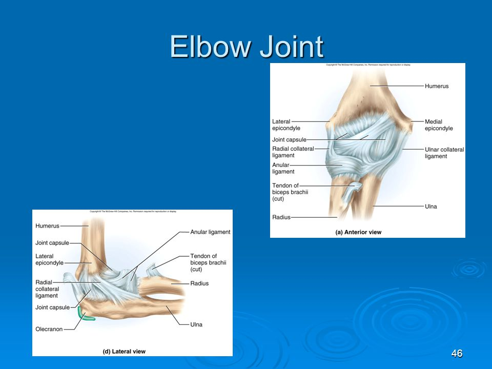 46 Elbow Joint