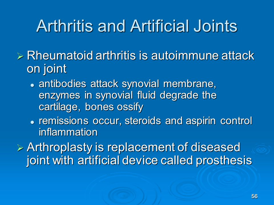 56 Arthritis and Artificial Joints  Rheumatoid arthritis is autoimmune attack on joint antibodies attack synovial membrane, enzymes in synovial fluid