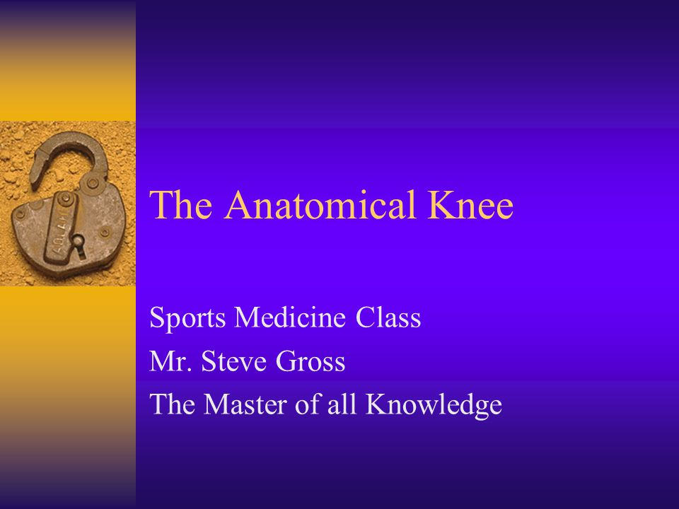 The Anatomical Knee Sports Medicine Class Mr. Steve Gross The Master of all Knowledge