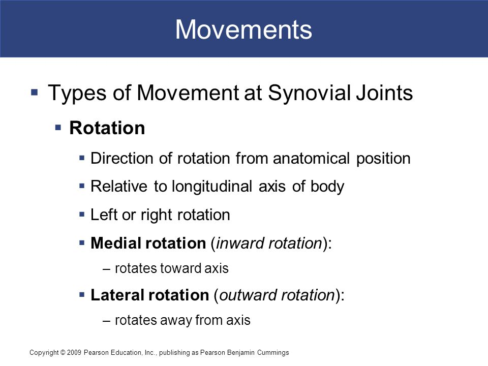 Copyright © 2009 Pearson Education, Inc., publishing as Pearson Benjamin Cummings Movements  Types of Movement at Synovial Joints  Rotation  Direct