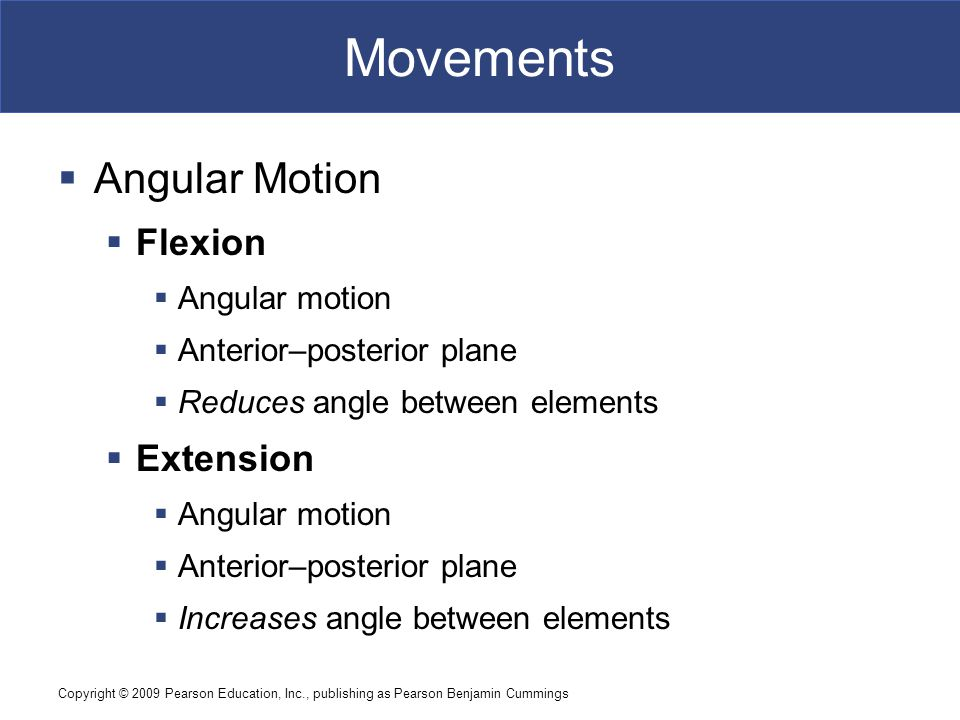 Copyright © 2009 Pearson Education, Inc., publishing as Pearson Benjamin Cummings Movements  Angular Motion  Hyperextension  Angular motion  Extension past anatomical position