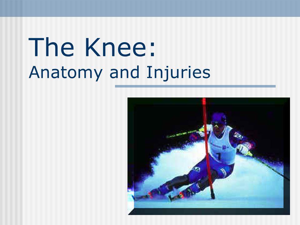 The Knee: Anatomy and Injuries