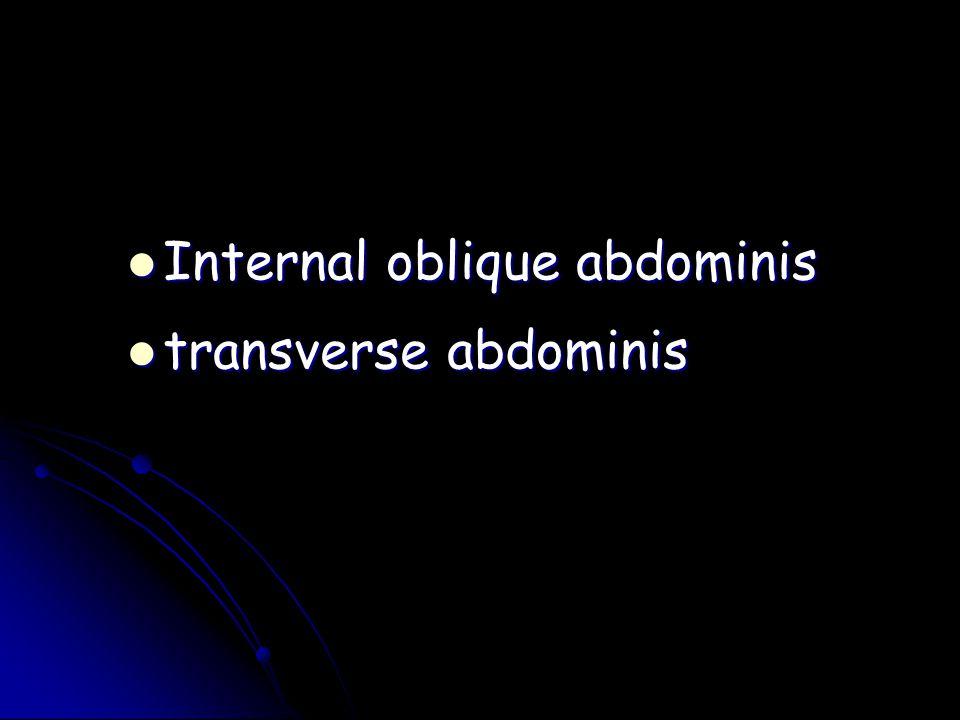 Internal oblique abdominis Internal oblique abdominis transverse abdominis transverse abdominis