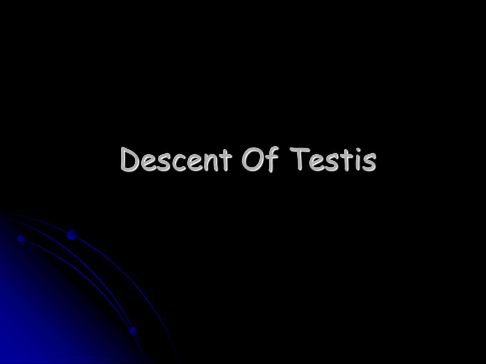 Descent Of Testis
