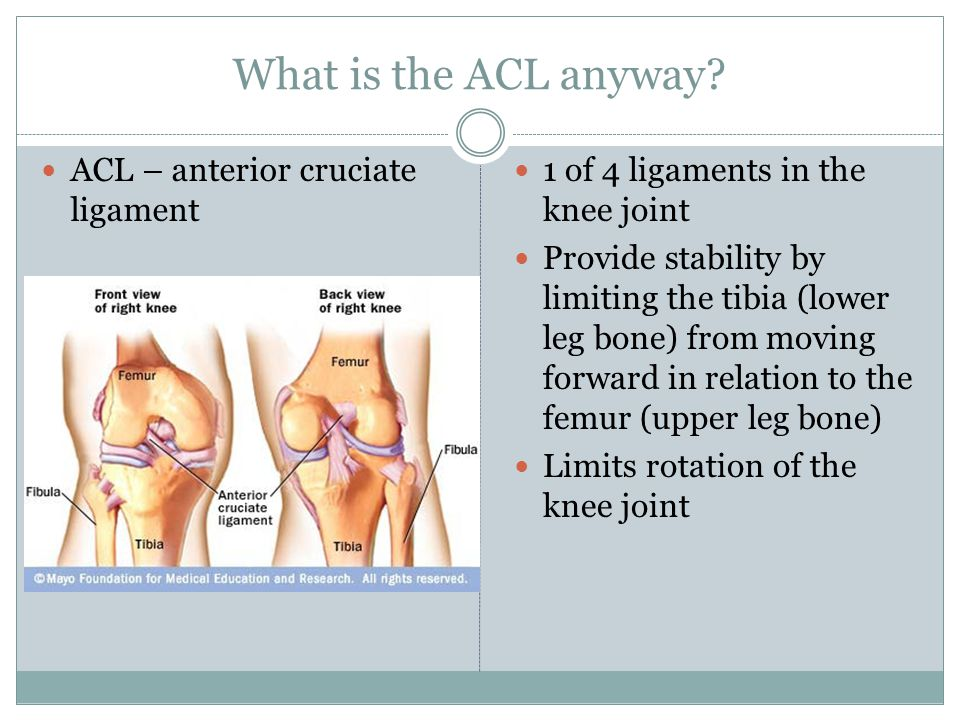 What is the ACL anyway? ACL – anterior cruciate ligament 1 of 4 ligaments in the knee joint Provide stability by limiting the tibia (lower leg bone) f