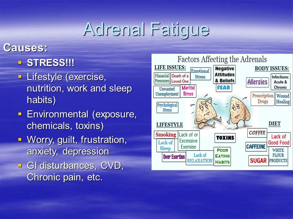 Adrenal Fatigue Causes:  STRESS!!.