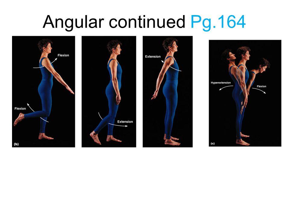Angular continued Pg.164