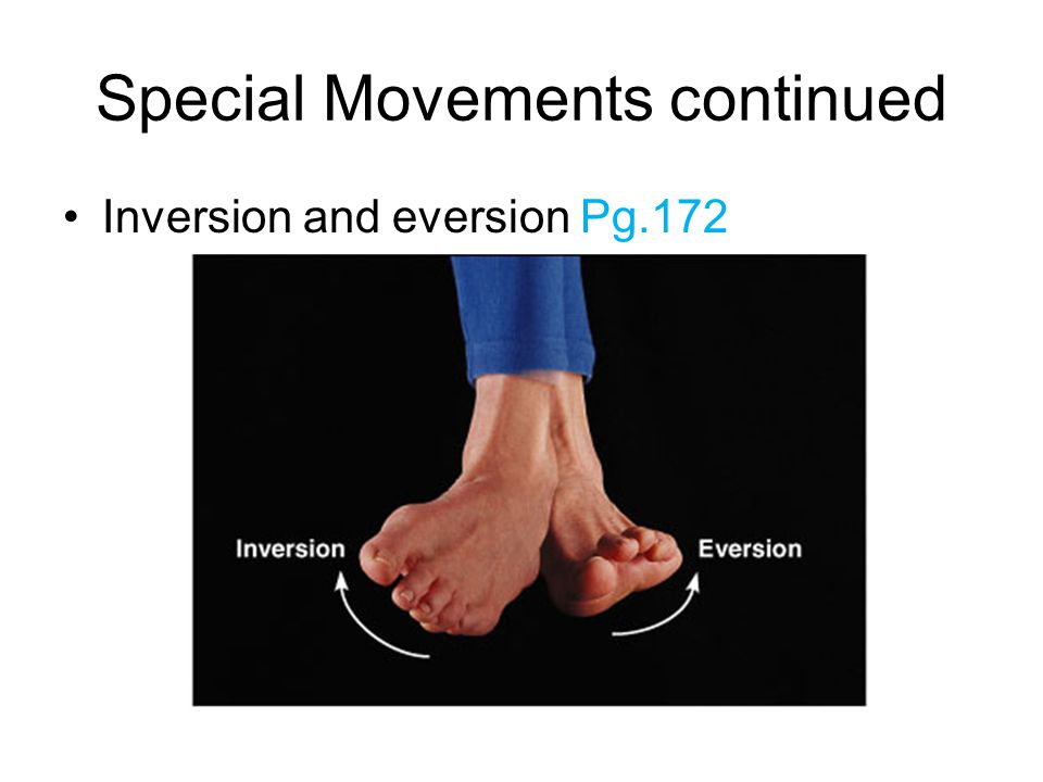 Special Movements continued Inversion and eversion Pg.172