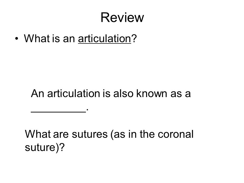 Review What is an articulation? An articulation is also known as a _________. What are sutures (as in the coronal suture)?