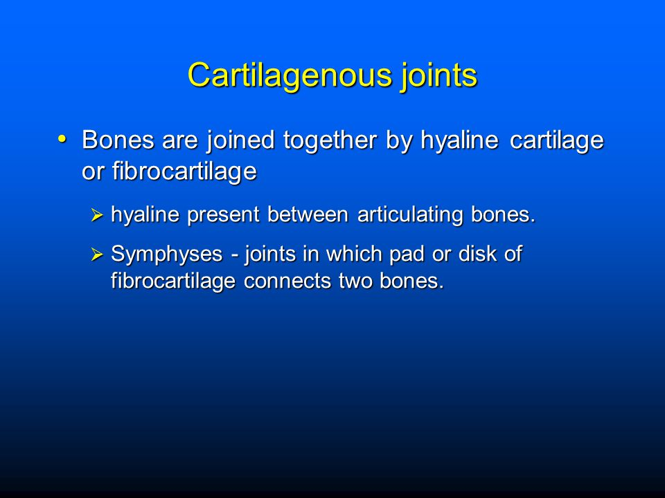 Synovial joints (diarthroses)(freely movable) freely movable joints freely movable joints Joint capsule- binds together Joint capsule- binds together Synovial membrane - lines capsule Synovial membrane - lines capsule Articular cartilage - covers bones Articular cartilage - covers bones Joint cavity - space between bones Joint cavity - space between bones –Menisci (articular disks) –Ligaments - hold bones together –Bursae - filled with fluid