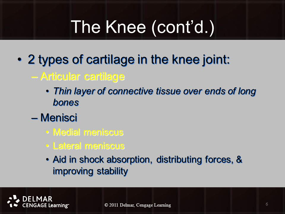 © 2010 Delmar, Cengage Learning 6 © 2011 Delmar, Cengage Learning The Knee (cont'd.) 2 types of cartilage in the knee joint:2 types of cartilage in the knee joint: –Articular cartilage Thin layer of connective tissue over ends of long bonesThin layer of connective tissue over ends of long bones –Menisci Medial meniscusMedial meniscus Lateral meniscusLateral meniscus Aid in shock absorption, distributing forces, & improving stabilityAid in shock absorption, distributing forces, & improving stability 6