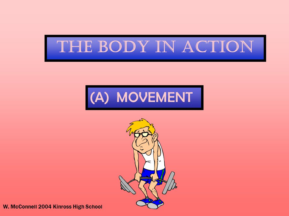 W. McConnell 2004 Kinross High School The Body In Action (A) MOVEMENT