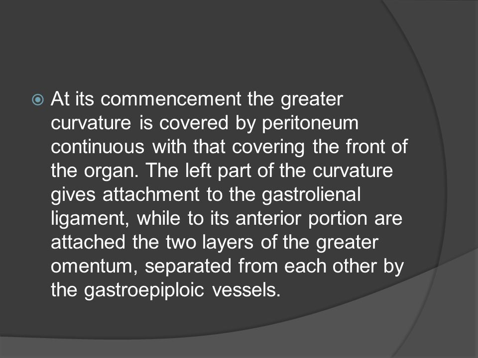  At its commencement the greater curvature is covered by peritoneum continuous with that covering the front of the organ. The left part of the curvat