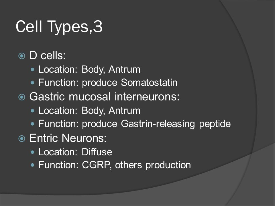 Cell Types,3  D cells: Location: Body, Antrum Function: produce Somatostatin  Gastric mucosal interneurons: Location: Body, Antrum Function: produce