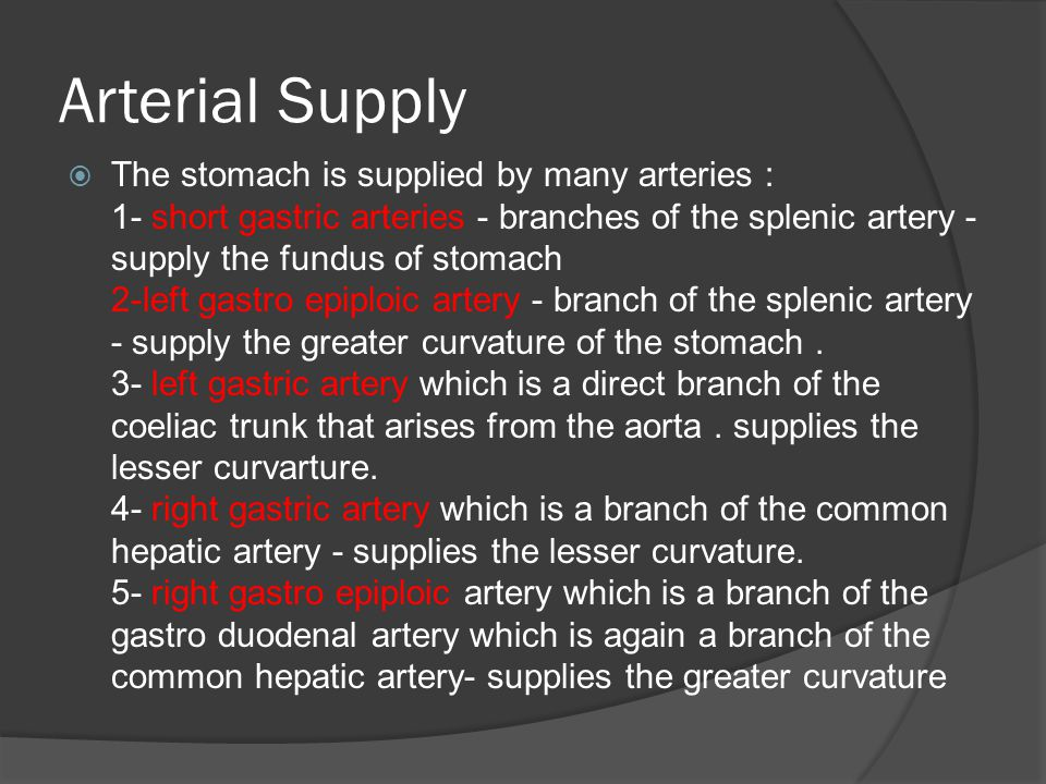 Arterial Supply  The stomach is supplied by many arteries : 1- short gastric arteries - branches of the splenic artery - supply the fundus of stomach