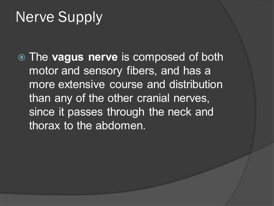 Nerve Supply  The vagus nerve is composed of both motor and sensory fibers, and has a more extensive course and distribution than any of the other cr