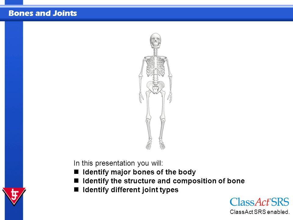Bones and Joints Spongy Bone Spongy bone combines lightness and strength.