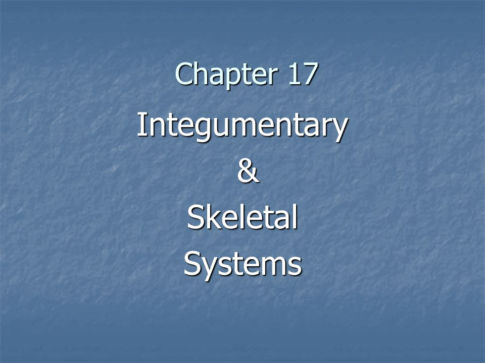 Includes: Includes: Epithelial cells make up skin & linings of digestive & respiratory Systems Epithelial cells make up skin & linings of digestive & respiratory Systems Skin, hair and nails Skin, hair and nails Functions of the Skin: Functions of the Skin: Protect from UV rays Protect from UV rays Regulate body temp Regulate body temp Waste removal Waste removal Barrier from infection Barrier from infection Sensory receptor Sensory receptor Two Main Layers & lower layer Two Main Layers & lower layer Epidermis Epidermis Dermis Dermis Hypodermis Hypodermis AKA adipose tissue & subcutaneous layer AKA adipose tissue & subcutaneous layer The Integumentary System Arrector muscle Dead skin cells Erector muscle
