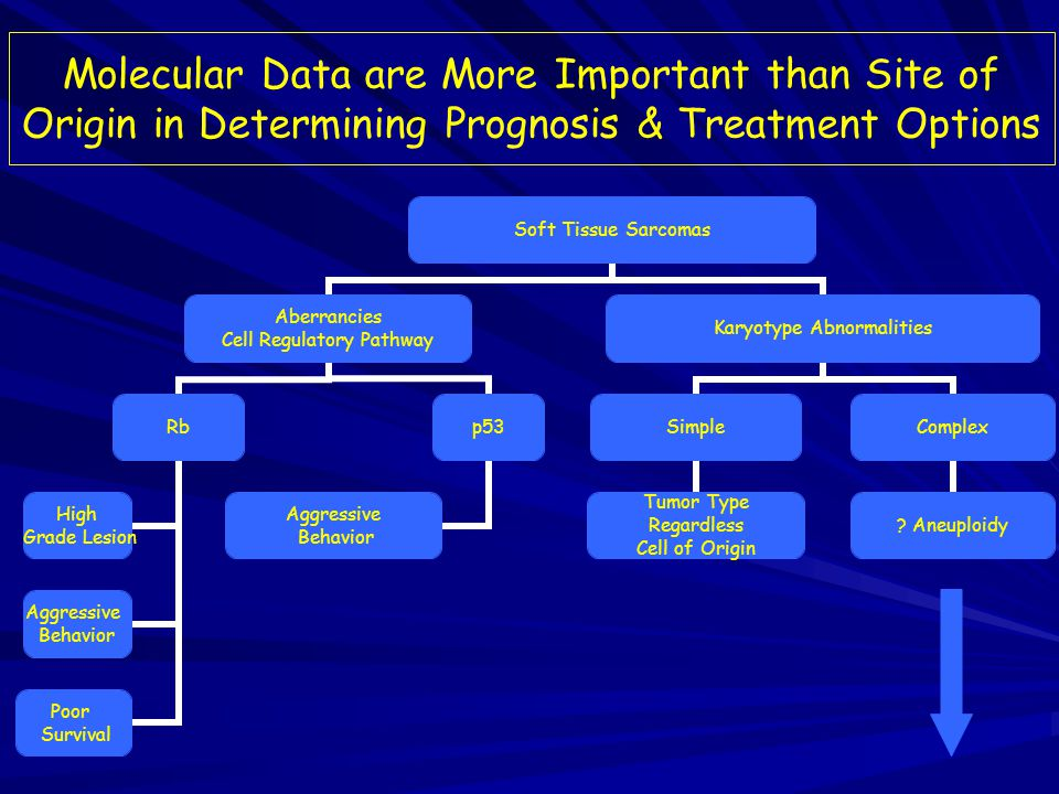 Sarcomas with Complex Karyotype Abnormalities: 1) 1) Fibrosarcoma.
