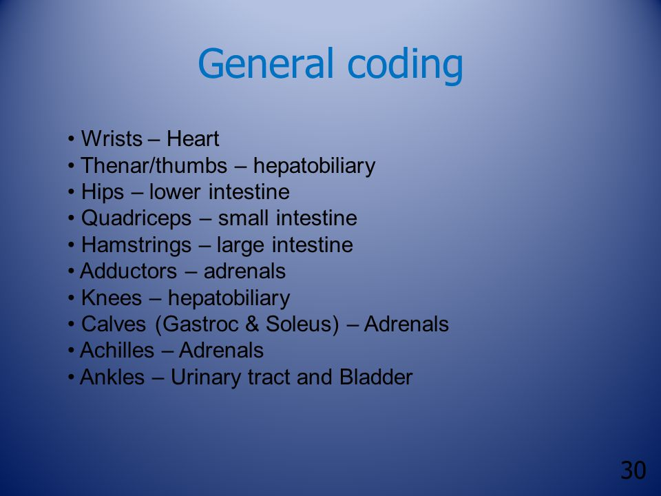 30 General coding Wrists – Heart Thenar/thumbs – hepatobiliary Hips – lower intestine Quadriceps – small intestine Hamstrings – large intestine Adductors – adrenals Knees – hepatobiliary Calves (Gastroc & Soleus) – Adrenals Achilles – Adrenals Ankles – Urinary tract and Bladder