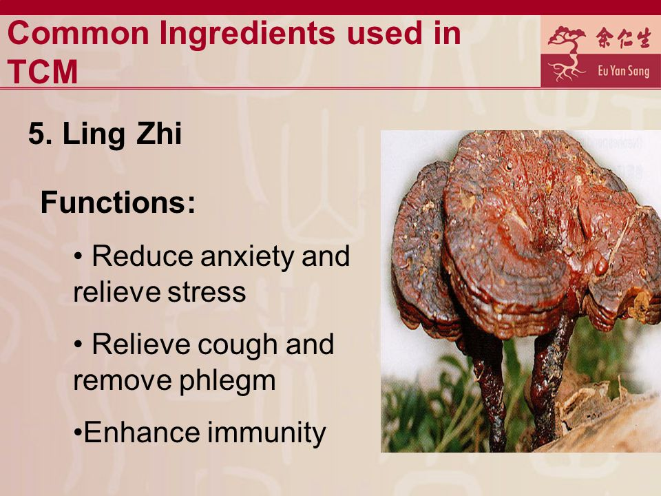 Common Ingredients used in TCM 5.